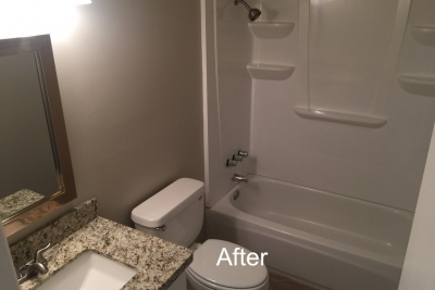 Main Guest Bathroom After